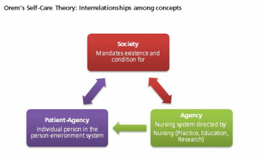 types of grand nursing theorists What is most useful to clinical nursing practice grand, specific these different levels of theory provide different types of utility for nursing practice.